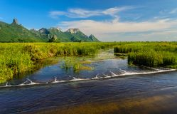De het rietpark en berg behoren zijn ecologie stock foto's