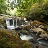 De het rokerige Bos en Waterval van de Berg Royalty-vrije Stock Afbeelding