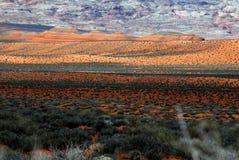 De het toneel Duin van de Woestijn en Rand van de Rots Royalty-vrije Stock Afbeeldingen