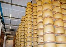 De het verouderen od parmezaanse kaas Stock Afbeelding