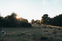 De het Westenduinen van Ouddorp, Nederland stock foto's