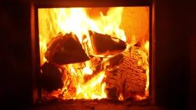De hete berk opent de brand in de oven, langzame motie het programma stock video