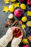De hete kruidige thee van de de herfstwinter stock fotografie