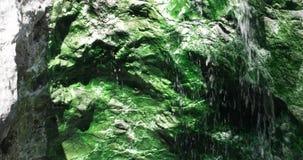 De hete Lente dichtbij Pangururan stock video