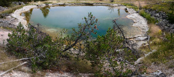 De Hete Lente van Yellowstone Stock Fotografie
