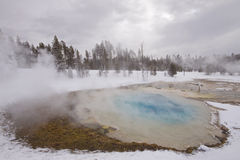 De hete lente in yellowstone, de winter Royalty-vrije Stock Afbeeldingen