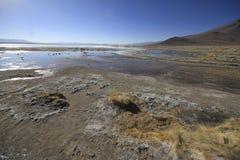 De hete Lentes, Eduardo Alveroa, Uyuni Bolivië Stock Afbeelding