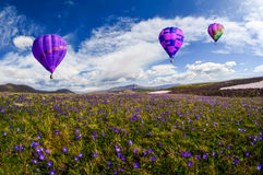 De hete luchtballon photgrphed in Bealton, toont de Vliegende Lucht van het Circus VA Royalty-vrije Stock Afbeeldingen
