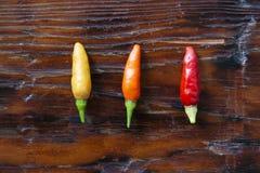De Hete Peper van de tabascosauspeper in Drie Kleuren royalty-vrije stock afbeeldingen