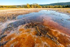 De hete thermische lente in Yellowstone Stock Foto's
