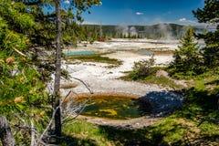 De hete thermische lente in Yellowstone Royalty-vrije Stock Afbeelding