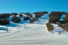 De heuvel en de bomen van de ski Stock Afbeelding