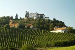 De heuvel Kapfenstein van de wijnstok Royalty-vrije Stock Foto's
