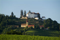 De heuvel Kapfenstein van de wijnstok Royalty-vrije Stock Fotografie