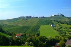 De heuvel Stiermarken van de wijnstok Stock Foto