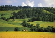 De heuvel van Bredon Stock Foto