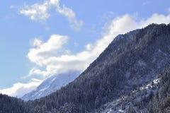 De heuvel van de berg Stock Afbeeldingen