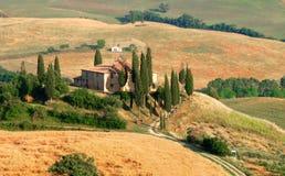 De heuvel van de cipres in Toscanië Stock Foto