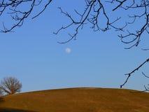 De heuvel van de herfst Stock Afbeeldingen