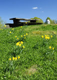 De heuvel van de lente met het symbool van het melklandbouwbedrijf Royalty-vrije Stock Afbeelding