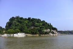 De Heuvel van de Olifantsboomstam stock foto