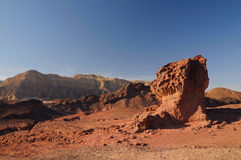 De heuvel van de paddestoel Royalty-vrije Stock Afbeeldingen