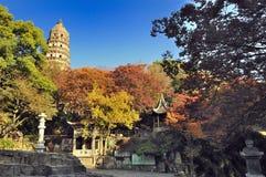 De heuvel van de Suzhoutijger Royalty-vrije Stock Foto's