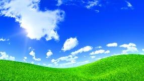 De Heuvel van het gras Stock Foto's