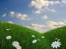 De heuvel van het gras Royalty-vrije Stock Afbeelding