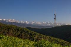 De heuvel van Koktobe en bergenmening in de lente, Alma Ata, Kazachstan Royalty-vrije Stock Afbeelding
