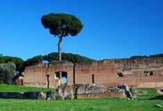 De Heuvel van Palatin in Rome stock foto
