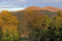 """De heuvel van Poloninacarynska in Bieszczady-Bergen in het Nationale Park van Zuidoostenpolen †""""Bieszczadzki Stock Foto"""