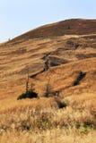 """De heuvel van Poloninacarynska in Bieszczady-Bergen in het Nationale Park van Zuidoostenpolen †""""Bieszczadzki Royalty-vrije Stock Foto's"""