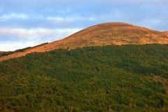 De heuvel van Poloninacarynska in Bieszczady-Bergen in Zuidoostenpolen - het Nationale Park van Bieszczadzki Royalty-vrije Stock Fotografie