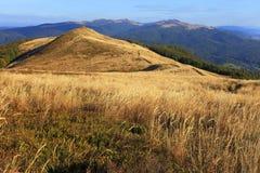 De heuvel van Poloninacarynska in Bieszczady-Bergen in Zuidoostenpolen - het Nationale Park van Bieszczadzki Stock Foto