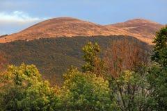 De heuvel van Poloninacarynska en Prowcza-Vallei in Bieszczady-Bergen in Zuidoostenpolen Royalty-vrije Stock Afbeeldingen