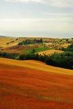 De heuvel van Toscanië Stock Foto's