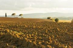 De heuvel van Toscanië Stock Fotografie