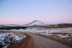 De heuvel van varkens Stock Foto