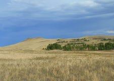 De heuvels in de steppe van Toeva royalty-vrije stock foto's