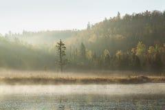 De heuvels en de pijnboom van de herfst langs rivier met ochtendmist Stock Fotografie