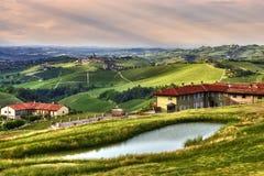De heuvels en de wijngaarden van Langhe stock foto's