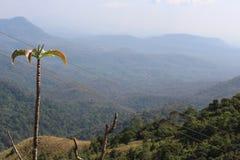 De heuvels hebben ogen en groen stock afbeelding
