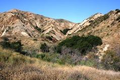 De Heuvels van de Canion van Aliso Stock Afbeeldingen