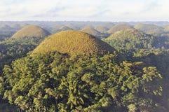 De heuvels van de chocolade, Bohol, Filippijnen Stock Foto