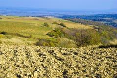 De heuvels van de herfst Stock Afbeeldingen