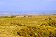 De heuvels van de herfst Stock Fotografie