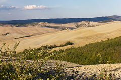 De Heuvels van de Klei van Kreta Senesi Stock Foto's
