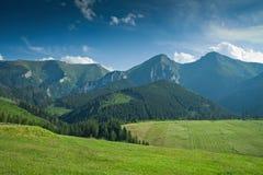De heuvels van de zomer Royalty-vrije Stock Foto's
