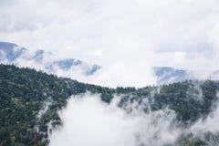 De heuvels van de Elzas Stock Afbeelding